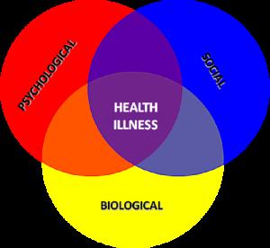 biopsychsocial-model